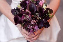 Wedding Flowers / by Allison Black