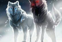 Off-White Wolf