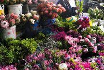 Flower markets around the world