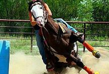 Riding / equestrians in the saddle