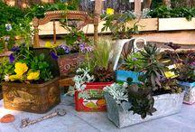 composition bacs jardinières plantes vivaces