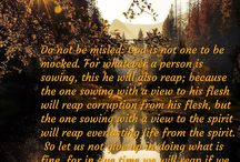 Biblical verses