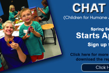 Children's Activities / After school programs that get your children involved with the shelter and caring for animals.