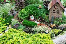 Garden ideas / Fairy gardens