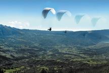 Landscapes  / Landscapes  Alpago Cansiglio