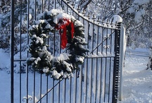 Christmass & Beauty snow
