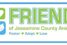 Save a precious puppy! / Local rescues and shelters to check out.  Choose Rescue over Retail - Save a life!