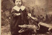 Photo Family. XIX-XX / Imatges, retrats de grups familiars o individus fetes als segles XIX o inicis del XX estil 'carte de visite' o retrats ocasionals