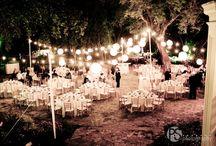 N&P / Miami Wedding
