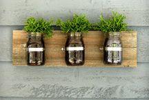 Houseplants / Indoor gardens, houseplants, terrariums