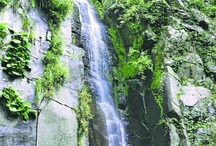 Himachal Travel & Tourism