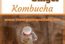 Kombucha home brewer