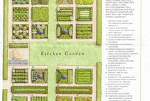 Le Potager / Kitchen garden, vegetables, herbes