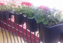 My garden / Mój dom na zewnątrz: ogrodzenie, balkony, ogród