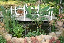 garden waterponds