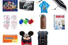 10 Cosas Esenciales llevar a Disney World