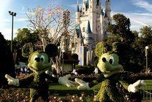 Disney World<3 / by Baylie Lamontagne