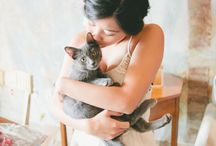 Wedding - with cats