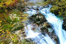 Der slowenische Herbst - Fotospaziergang
