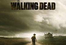 "The Walking Dead / What on earth is a ""zombie""?! The right term is ""Walker""."