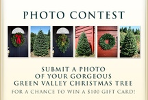 Green Valley Christmas Trees Photo Contest