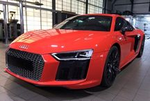 Audi R8 / Audi R8 posts  / by Swansway Group