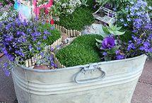 garden terapy
