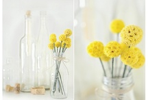 Everyday Florals & Decorations / Great inspirations for daily home decor. / by Claire Smith