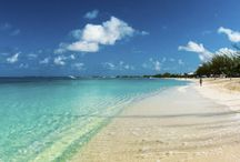 My vacation dreams