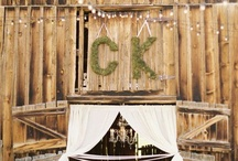 Wedding festivities! / by Courtney Castleberry