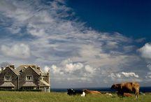 Great Britain landscapes