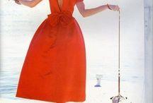 Dresses dog