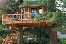Tree houses / I want one of these!!!! / by Michelle Endsley
