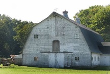 Old People, Old Barns, Old Anything / by Martha Waggoner