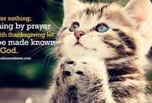 Scriptures  / by Prayer Ministry