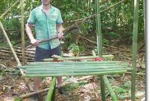 Survival Camp / Ideas for jungle survival training