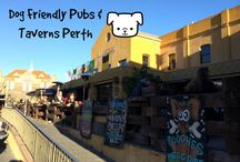 Perth Dog Friendly Pubs & Taverns / Find bars, taverns and pubs where you can enjoy a drink with your dog in Perth & WA