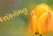 Frühling / Frühling Bilder Gedichte