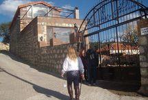 Dalya'nın Taş Evi ve Bahçesi