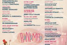 Notte Rosa 2013 / Il nostro libro fotografico del Capodanno della Riviera Romagnola!