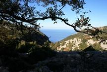 Supramonte ~ Sardegna  / Il supramonte - un complesso montuoso meraviglioso della Sardegna, non si può fare a meno di stupirsi. Der Supramonte - ein wunderschönes Gebirge auf Sardinien, das Dich zum Staunen bringt. The Supramonte - an amazing mountain area in Sardinia, you will be astonished. http://pecora-nera.eu/