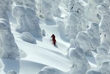 Winter Wonderland / by Lantliv i Vitt