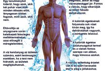 Fogyókúra és a víz / A víz elengedhetetlen része bármely fogyókúrának. Tudd meg miért!