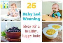 Baby Led Weaning