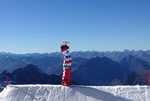 Snowboard / Snowboardcross, Freestyle snowboard, Alpine snowboard