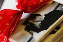 Gift Ideas / by Dani Raver