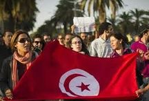 "Hundreds of demonstrators accused the Tunisian government of ""lying"" and ""terrorism industry"" and demanding the government to drop"