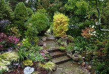 Garden - hage / Hagerelaterte bilder som eg likar!
