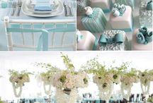 Blue Wedding / Blue wedding theme color