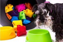 Gamelle pliable en silicone pour chien et chat